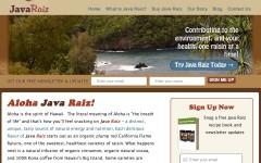 Java Raiz